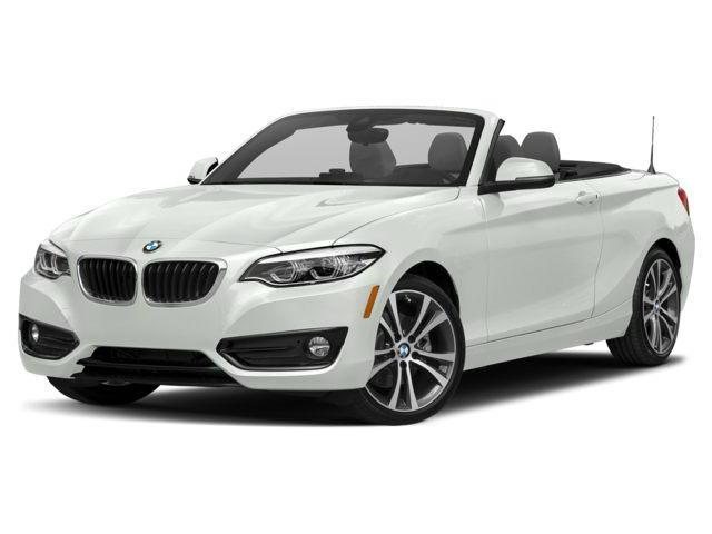 2019 BMW 230i xDrive (Stk: 21325) in Mississauga - Image 1 of 9