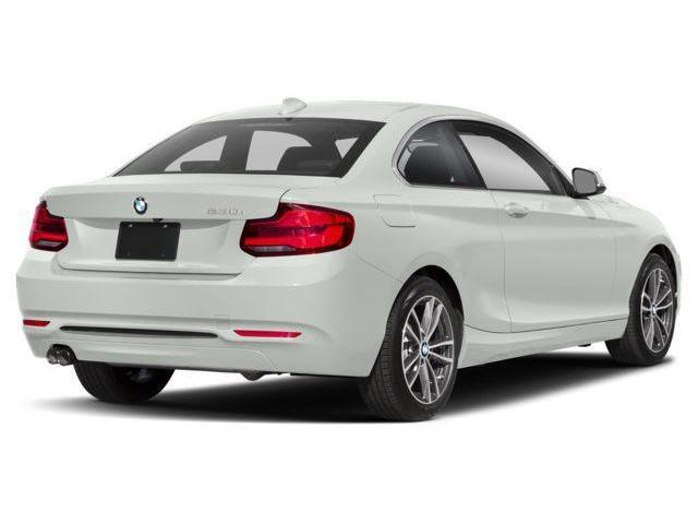 2019 BMW 230i xDrive (Stk: 20238) in Kitchener - Image 3 of 9