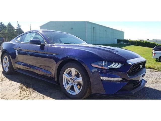 2019 Ford Mustang EcoBoost (Stk: 19MU0027) in Unionville - Image 1 of 12