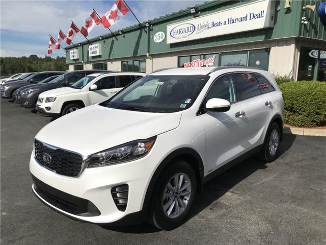 2019 Kia Sorento 2.4L LX (Stk: 10104) in Lower Sackville - Image 1 of 19