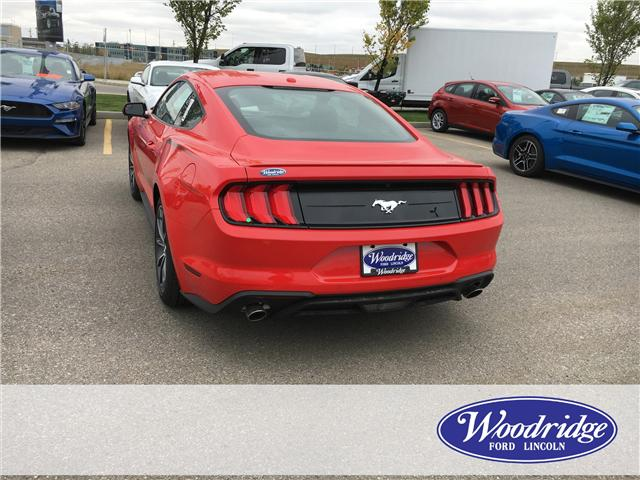2019 Ford Mustang EcoBoost (Stk: K-07) in Calgary - Image 3 of 5