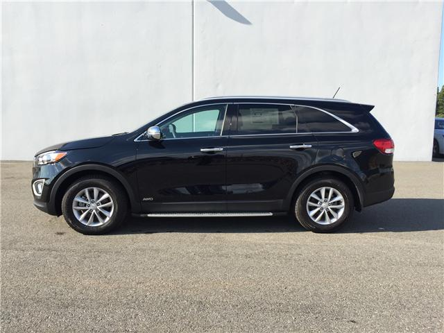 2017 Kia Sorento 2.4L LX (Stk: G214015) in Antigonish / New Glasgow - Image 1 of 17