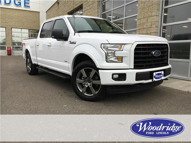 2017 Ford F-150 XLT (Stk: 29383) in Calgary - Image 1 of 20