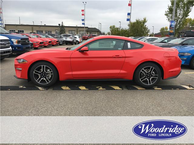 2019 Ford Mustang EcoBoost Premium (Stk: K-195) in Calgary - Image 2 of 5