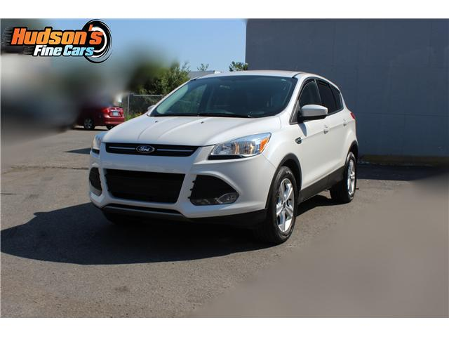 2014 Ford Escape SE (Stk: 95240) in Toronto - Image 1 of 18