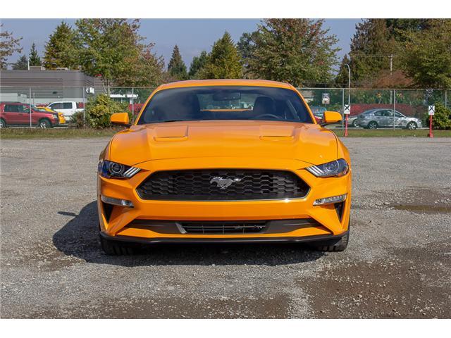 2019 Ford Mustang EcoBoost Premium (Stk: 9MU1281) in Surrey - Image 2 of 27