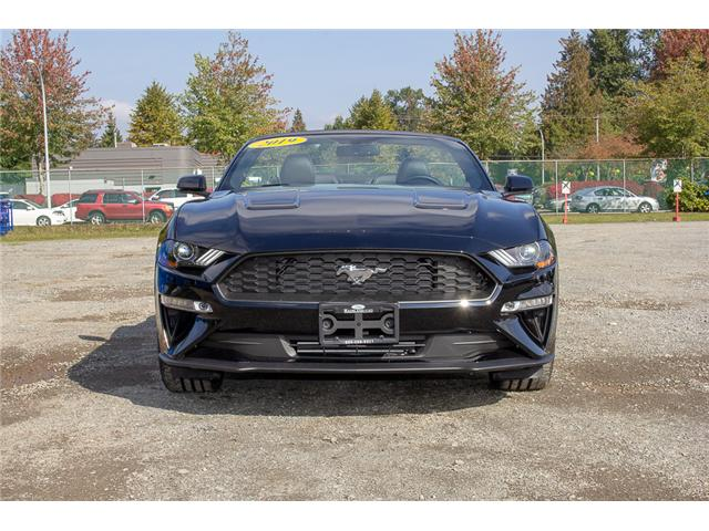 2019 Ford Mustang EcoBoost Premium (Stk: 9MU1282) in Surrey - Image 2 of 26