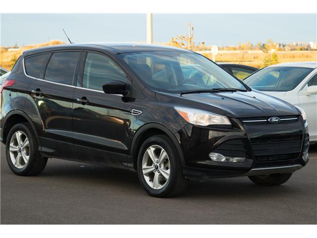 2013 Ford Escape SE (Stk: P329) in Brandon - Image 2 of 12