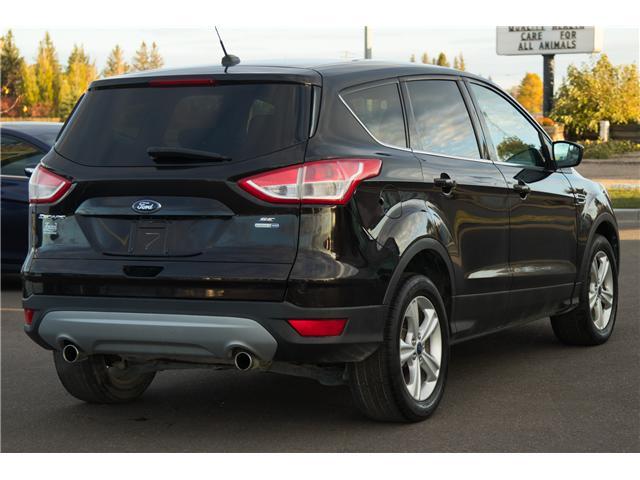 2013 Ford Escape SE (Stk: P329) in Brandon - Image 4 of 12