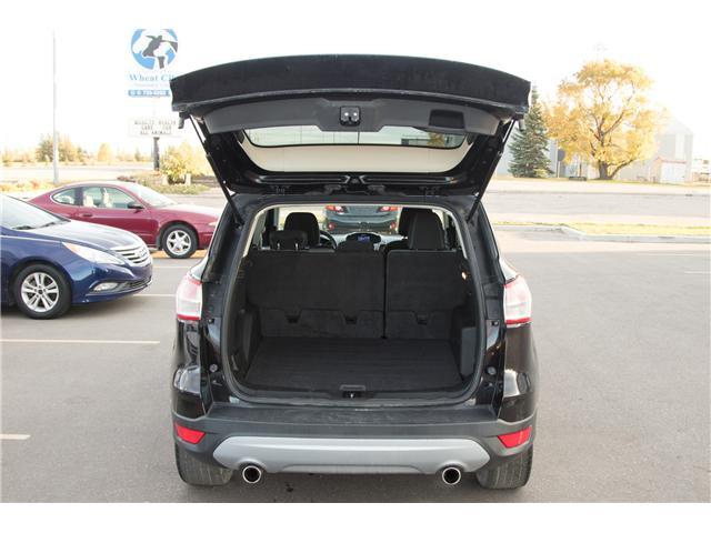 2013 Ford Escape SE (Stk: P329) in Brandon - Image 6 of 12