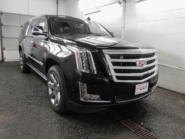 2019 Cadillac Escalade ESV Premium Luxury (Stk: C9-44150) in Burnaby - Image 2 of 12