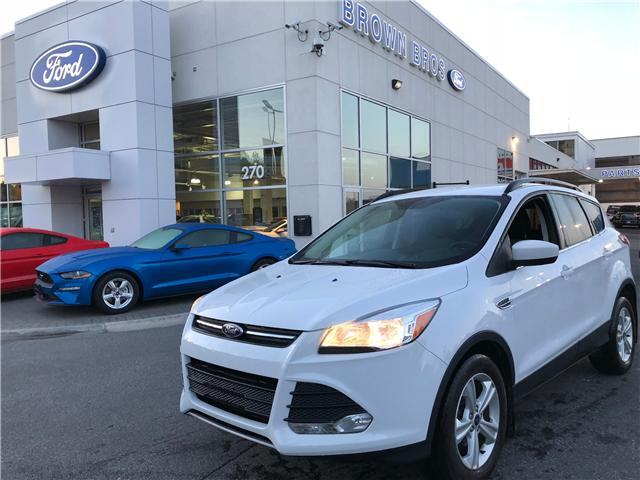 2016 Ford Escape SE (Stk: 1861315A) in Vancouver - Image 1 of 24