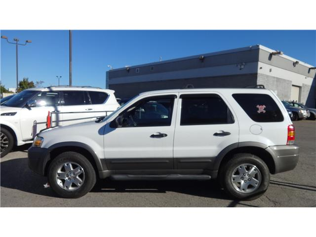2006 Ford Escape XLT (Stk: JC837810A) in Scarborough - Image 2 of 14
