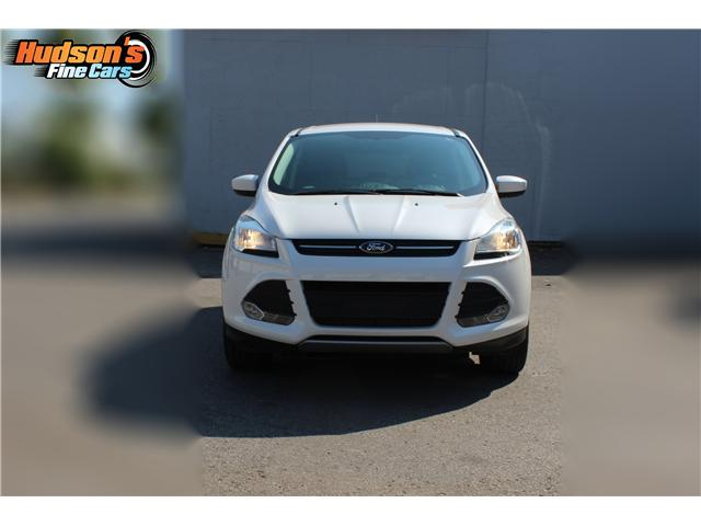 2014 Ford Escape SE (Stk: 19532) in Toronto - Image 2 of 16