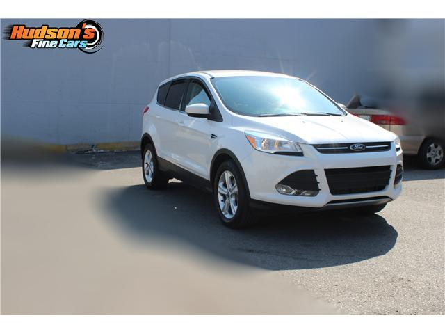 2014 Ford Escape SE (Stk: 19532) in Toronto - Image 3 of 16