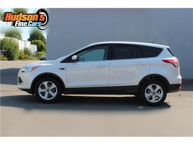 2014 Ford Escape SE (Stk: 19532) in Toronto - Image 4 of 16