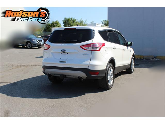 2014 Ford Escape SE (Stk: 19532) in Toronto - Image 6 of 16