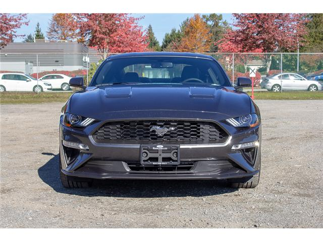 2019 Ford Mustang  (Stk: 9MU3902) in Surrey - Image 2 of 25