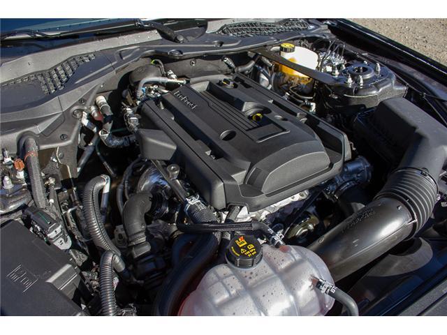 2019 Ford Mustang EcoBoost Premium (Stk: 9MU3902) in Surrey - Image 9 of 25