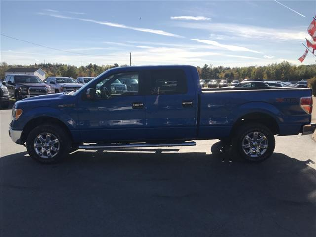 2014 Ford F-150 XLT (Stk: 10143) in Lower Sackville - Image 2 of 15