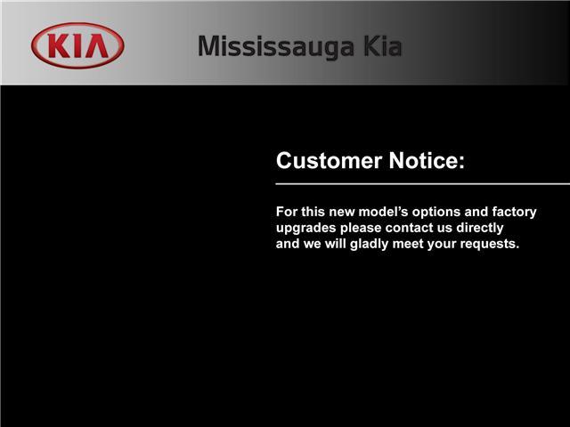2019 Kia Sedona LX+ (Stk: SD19005) in Mississauga - Image 13 of 25