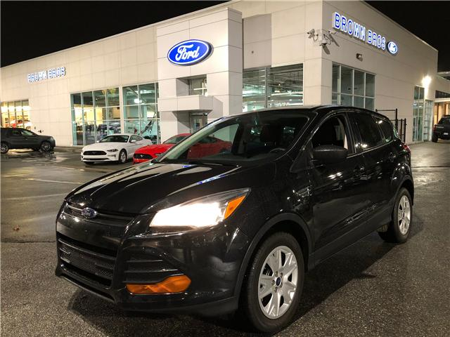 2014 Ford Escape S (Stk: OP18316) in Vancouver - Image 1 of 24