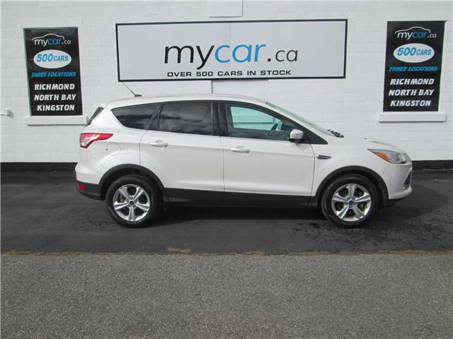 2014 Ford Escape SE (Stk: 181627) in Richmond - Image 1 of 13