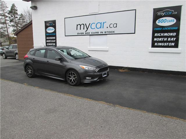 2016 Ford Focus SE (Stk: 181656) in Richmond - Image 2 of 14