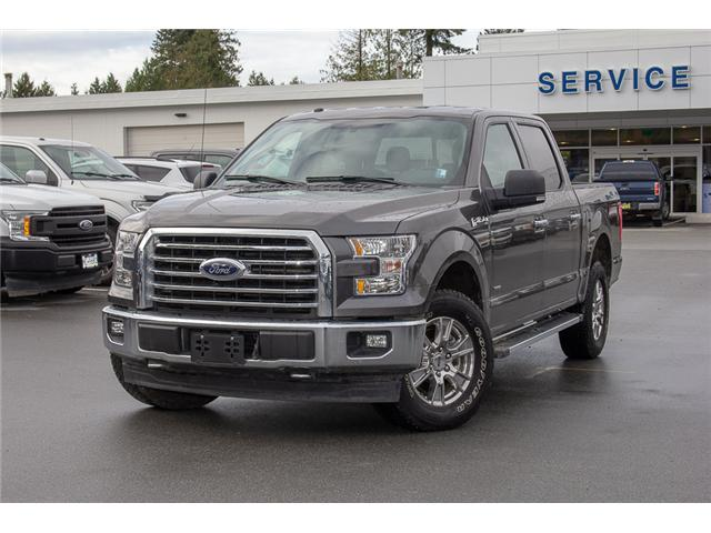2017 Ford F-150 XLT (Stk: P7399) in Surrey - Image 3 of 26