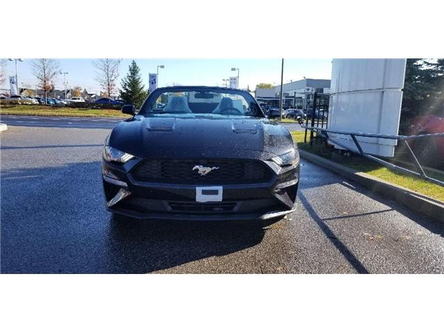 2019 Ford Mustang EcoBoost (Stk: 19MU0190) in Unionville - Image 1 of 10