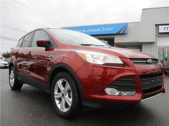 2014 Ford Escape SE (Stk: 181721) in Kingston - Image 1 of 13
