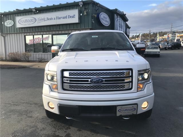 2014 Ford F-150 Limited (Stk: 10181) in Lower Sackville - Image 8 of 32