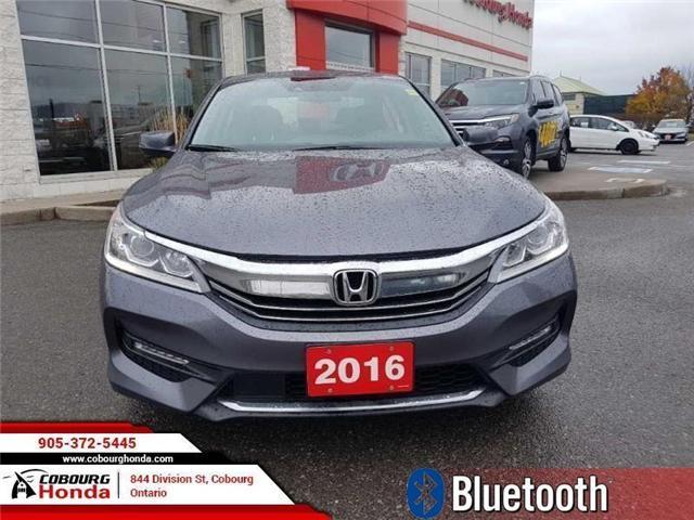 2016 Honda Accord EX-L (Stk: 18331A) in Cobourg - Image 2 of 13