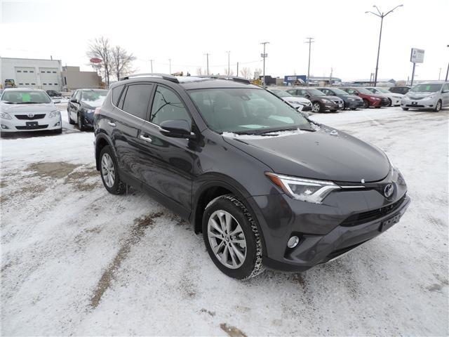 2017 Toyota RAV4 Limited (Stk: 173942) in Brandon - Image 4 of 26