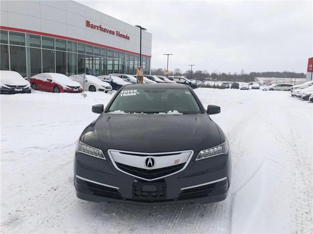 2015 Acura TLX Tech (Stk: B0169) in Nepean - Image 2 of 27