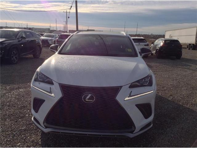 2019 Lexus NX 300 Base (Stk: 190173) in Calgary - Image 4 of 10