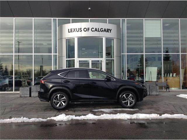 2019 Lexus NX 300 Base (Stk: 190202) in Calgary - Image 1 of 11