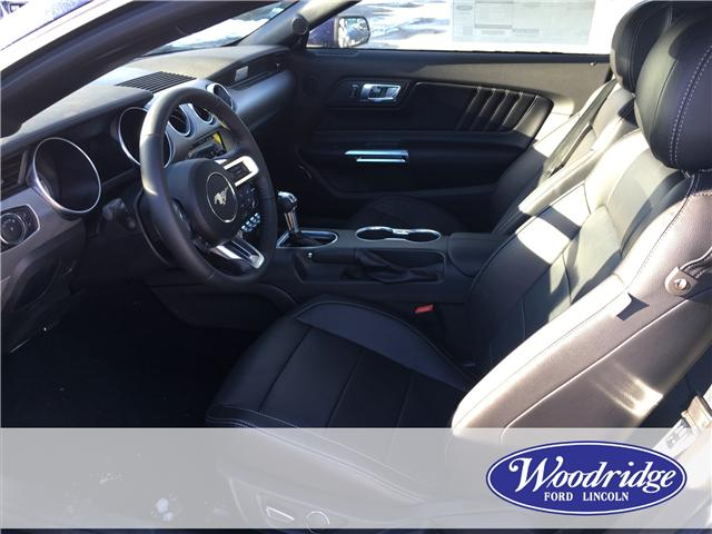 2019 Ford Mustang EcoBoost Premium (Stk: K-247) in Calgary - Image 4 of 5
