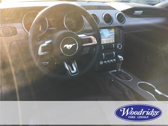 2019 Ford Mustang EcoBoost Premium (Stk: K-247) in Calgary - Image 5 of 5
