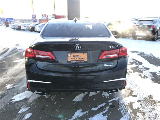 2018 Acura TLX Tech (Stk: LS2001) in Saskatoon - Image 7 of 23