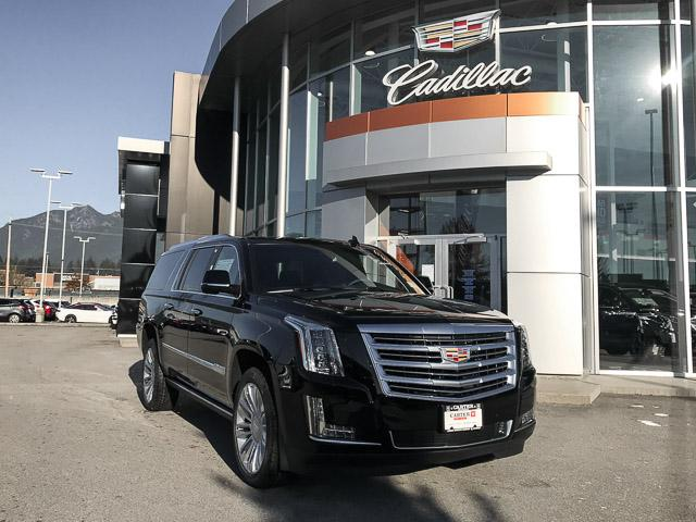 2019 Cadillac Escalade ESV Platinum (Stk: 9D04030) in North Vancouver - Image 2 of 18