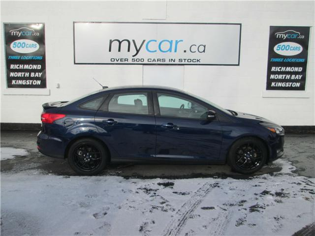 2016 Ford Focus SE (Stk: 181875) in Richmond - Image 1 of 13