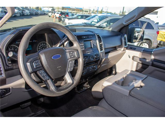 2015 Ford F-150 XLT (Stk: EE899140A) in Surrey - Image 12 of 26