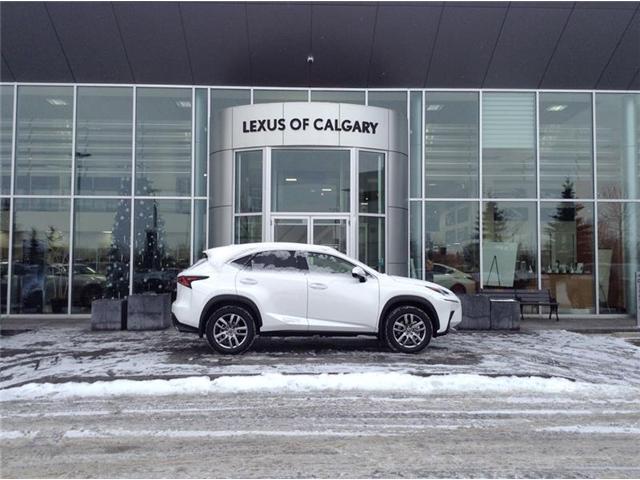 2019 Lexus NX 300 Base (Stk: 190158) in Calgary - Image 1 of 11