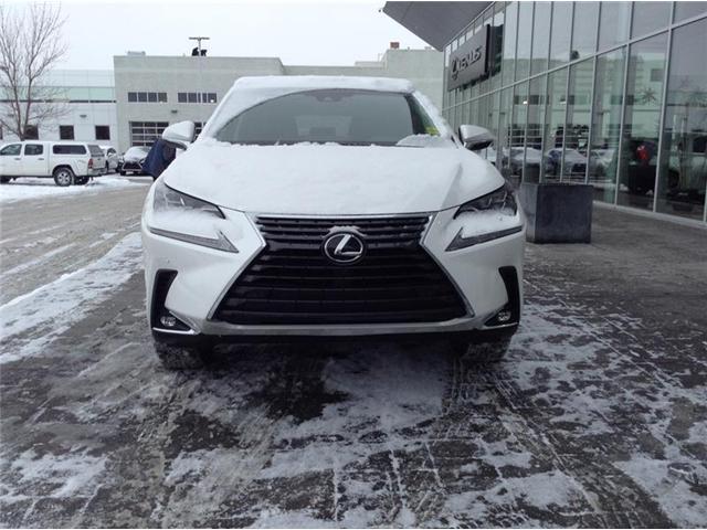 2019 Lexus NX 300 Base (Stk: 190158) in Calgary - Image 2 of 11