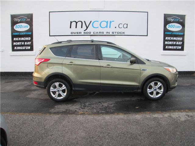 2013 Ford Escape SE (Stk: 181876) in Richmond - Image 1 of 13