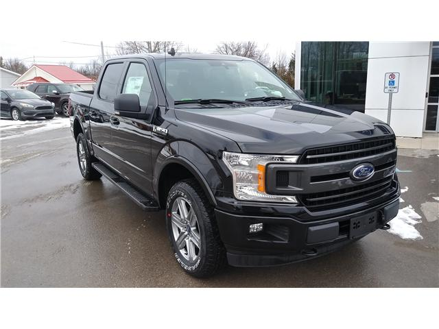 2019 Ford F-150 XLT (Stk: F1143) in Bobcaygeon - Image 2 of 23