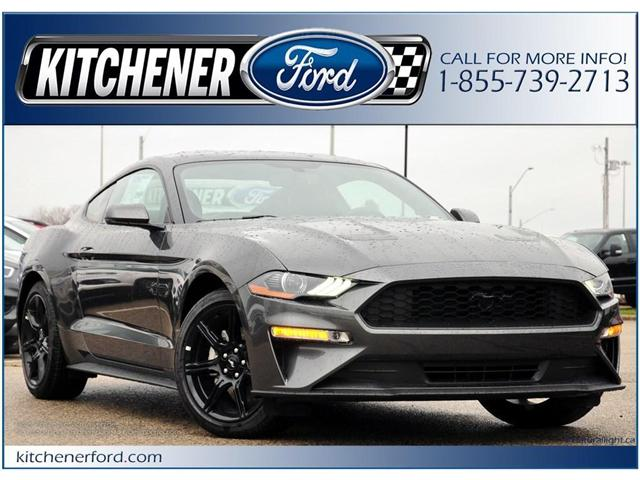 2019 Ford Mustang EcoBoost Premium (Stk: 9M0300) in Kitchener - Image 1 of 5