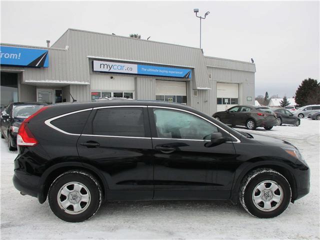 2014 Honda CR-V LX (Stk: 182035) in Kingston - Image 2 of 12
