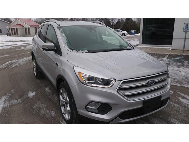 2019 Ford Escape Titanium (Stk: ES1151) in Bobcaygeon - Image 2 of 27